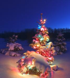 Kerstprogramma 2015 De YogaSchooll